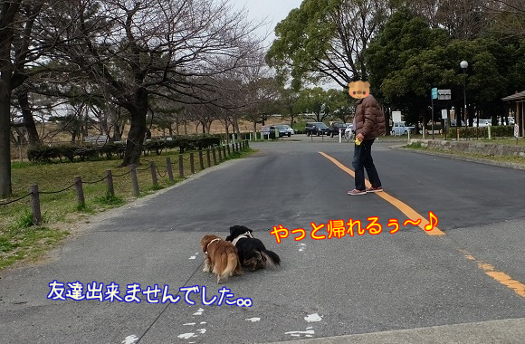 20160307112300965.png