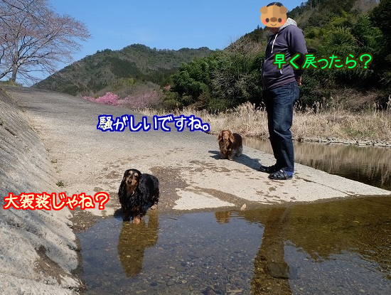 20160328121837ab7.png