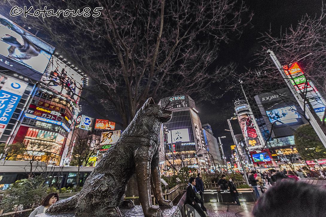 深夜の渋谷2 20160316