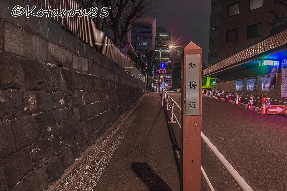 東京復活大聖堂5 20160327