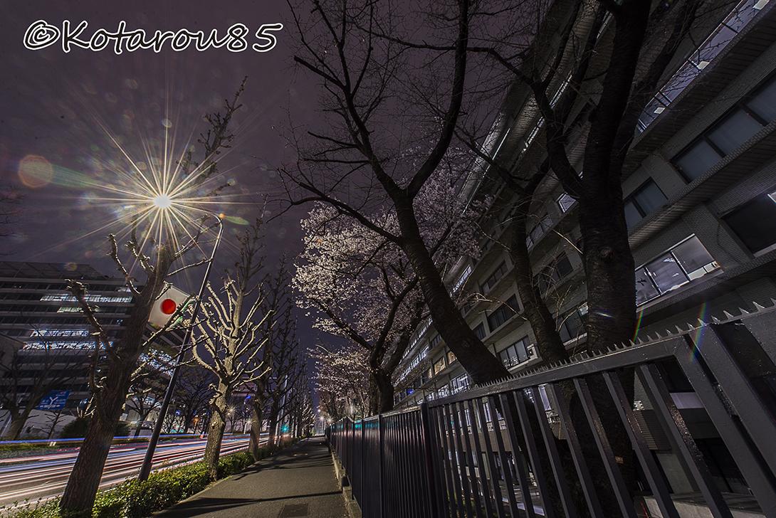 深夜の外務省 20160330