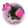 花のフレーム かわいい猫ちゃん入りもあります