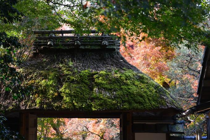 20151201安楽寺