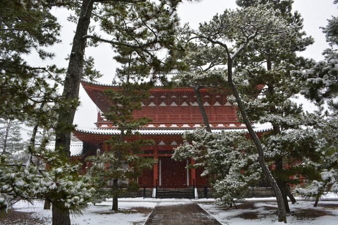 20160120退蔵院