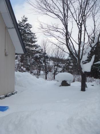 北海道の冬2016