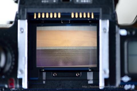 Nikon F5_005_00001