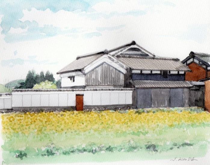 菜の花のある風景 (700x550)