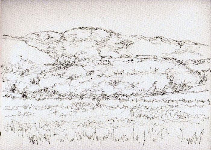 背割堤桜遠望 デッサン (700x500)