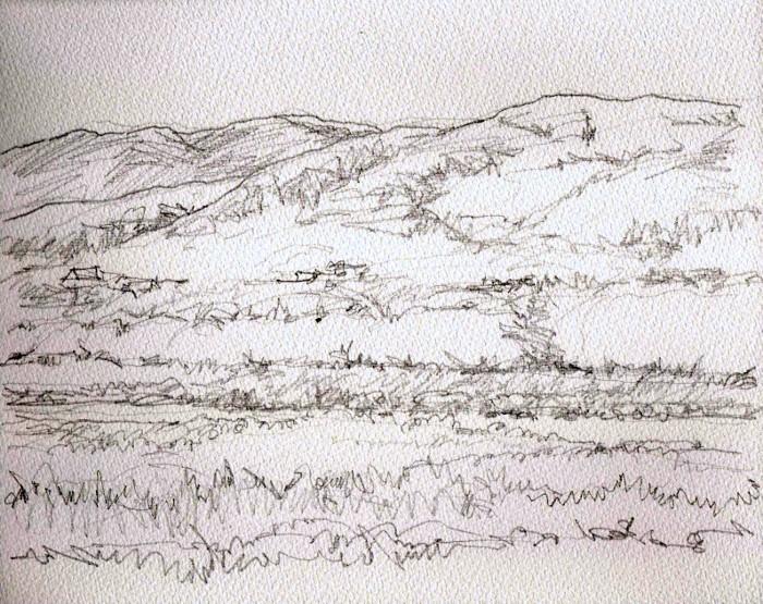 背割堤の桜 デッサン (700x555)
