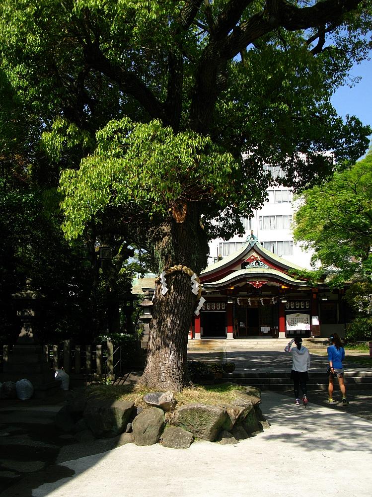 2014_04_23 大阪中津:豊崎神社 (5)