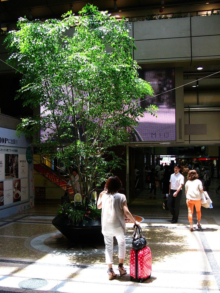 2012_09_12 大阪天王寺- (16)