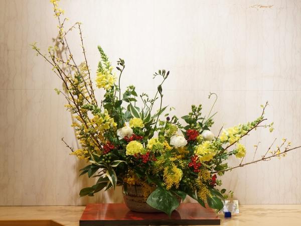 2月の花1