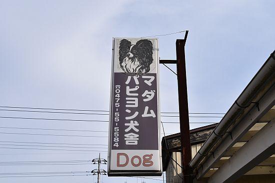 DSC_1292.jpg
