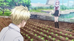 norn9 2-6 (14)