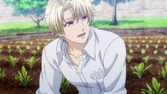 norn9 2-6 (13)