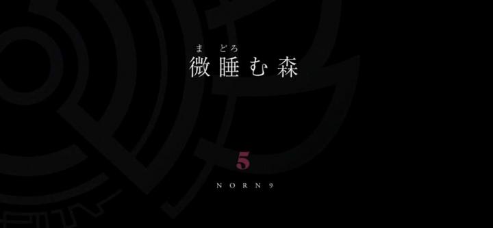 norn4-9 (39)aaa