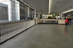 DSC_9516.jpg
