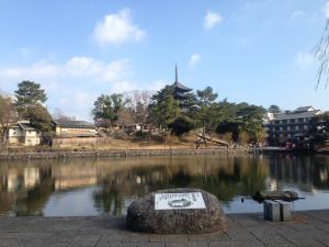 sarusawa0104_convert_20160104114508.jpg