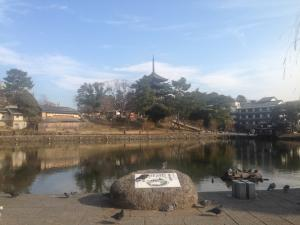 sarusawa0111_convert_20160111113711.jpg
