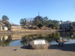 sarusawa0116_convert_20160116114437.jpg