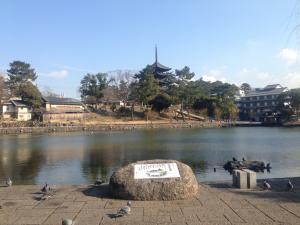 sarusawa0127_convert_20160127121430.jpg