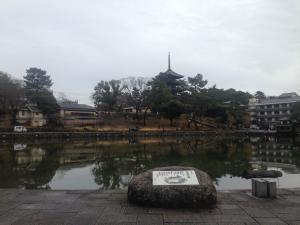 sarusawa0130_convert_20160130115302.jpg