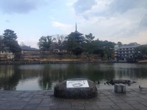 sarusawa0209_convert_20160209114308.jpg