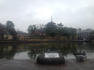 sarusawa1224_convert_20151224121158.jpg