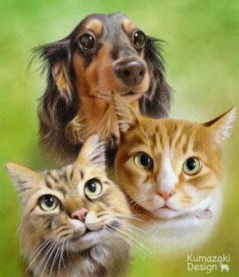 ペット肖像画 ペットの絵 ペット画 似顔絵 イラスト 犬 猫 いぬ ネコ 色えんぴつ画 色鉛筆画