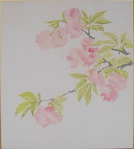 100222桜、大竹