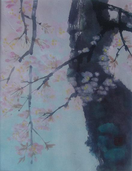100222枝垂れ桜1大竹卓写2