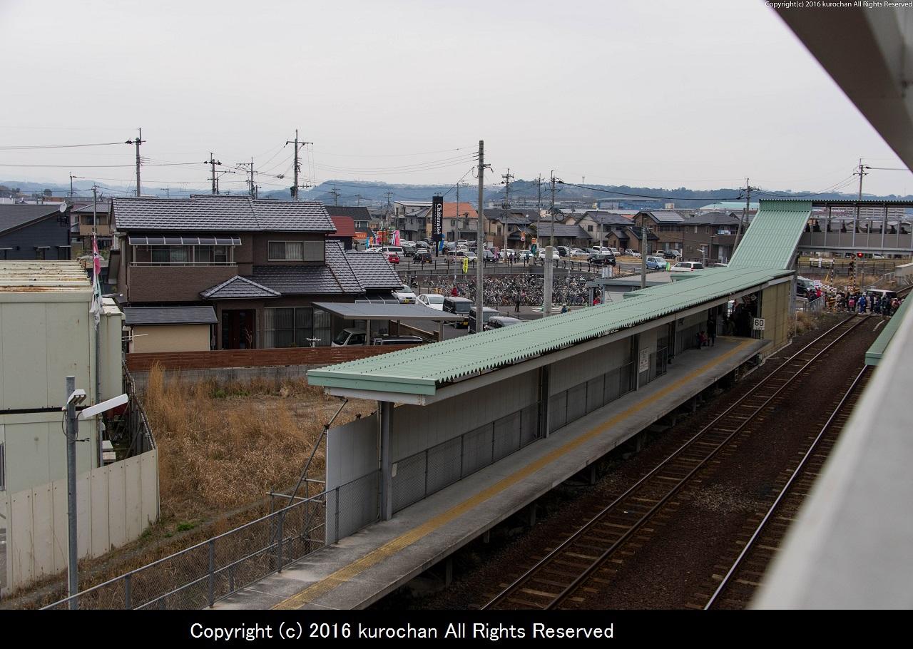 ASF_8394-2.jpg