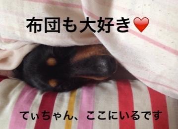 fc2blog_20160225223107d6c.jpg
