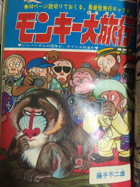 猿の見本2