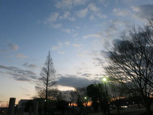 IMG_0318Blog.jpg