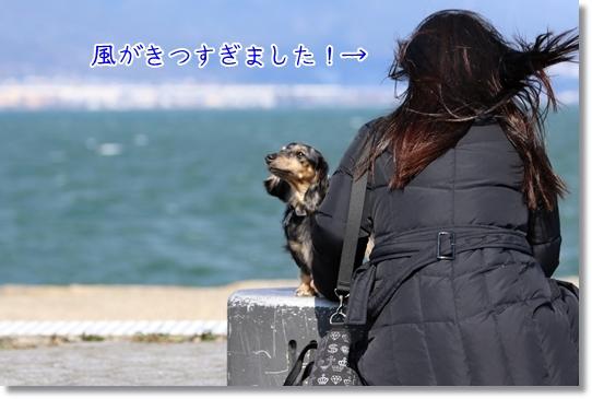 3V9A7119.jpg