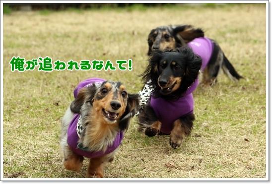 3V9A8732.jpg