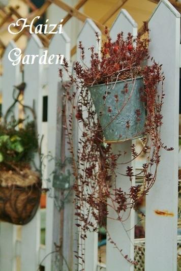 くるカラ ハイジの玄関先GARDEN 胡桃の殻 くるみ マルチング