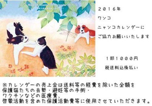cats8_20160105202737da48.jpg