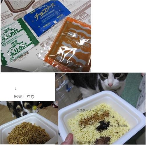cats_2016031917135233a.jpg