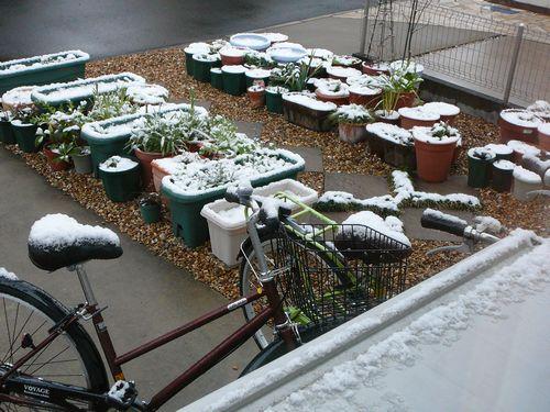2月25日 積雪