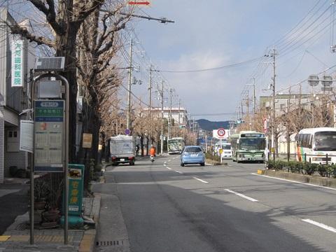 379-1.jpg