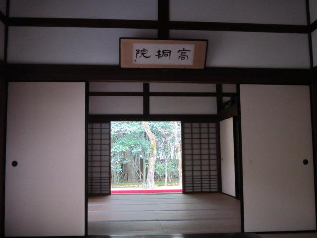 383-16.jpg