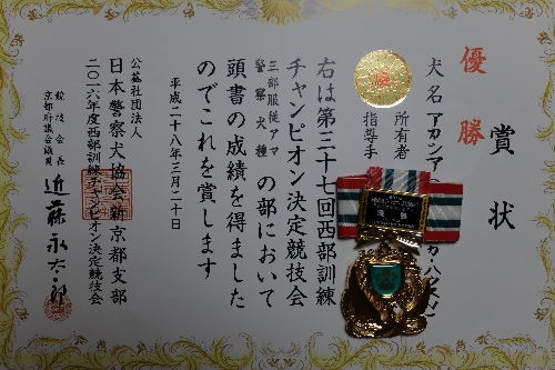 20160320 (19)