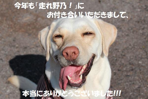 IMG_7558ne.jpg