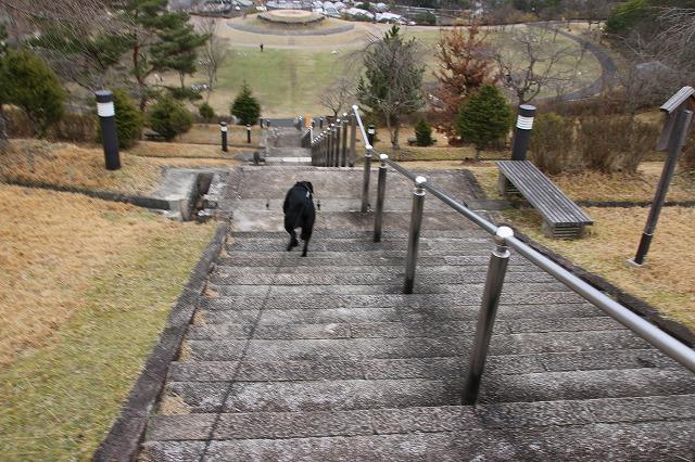 階段下りる