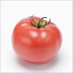 veg_tomato001.jpg