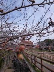 16-03-23-11-55-36-849_photo_convert_20160330102312.jpg