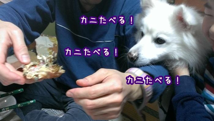 IMAG3929.jpg