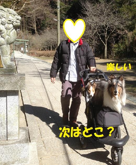 鎌倉散歩9